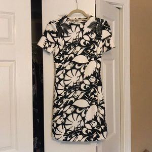 Zara Black/White Dress